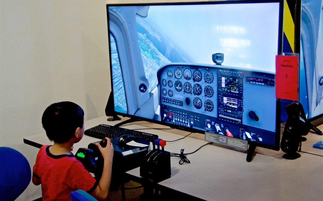 Flight Simulator Rally