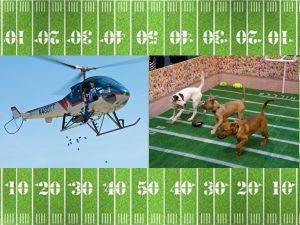 Flying Football Fun Fest